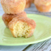 Cinnamon Sugar Donut Muffins (French Breakfast Puffs)
