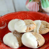 The Best White Chocolate Dipped Ginger Cookies