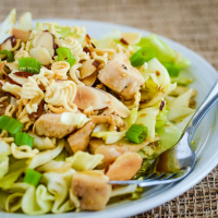 Chinese Cabbage Salad with Chicken Recipe