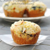Orange Blueberry Muffins with Crumb Topping