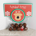 Easy Christmas Gift Idea--Reindeer Noses