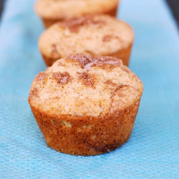 Fluffy Cinnamon Sugar Muffins