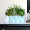 Fabric Covered Succulent Planter Box