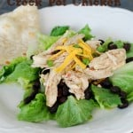 Awesome Bajio Style Crock Pot Chicken