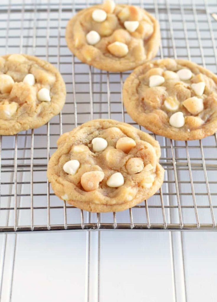 Recipe for the best ever macadamia nut cookies!