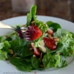 Raspberry Yogurt gives this Poppy Seed Dressing a pretty color and yummy flavor!