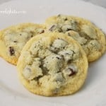 coconut chocolate chip cookies 007