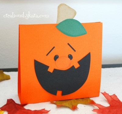 pumpkin treat bag 006