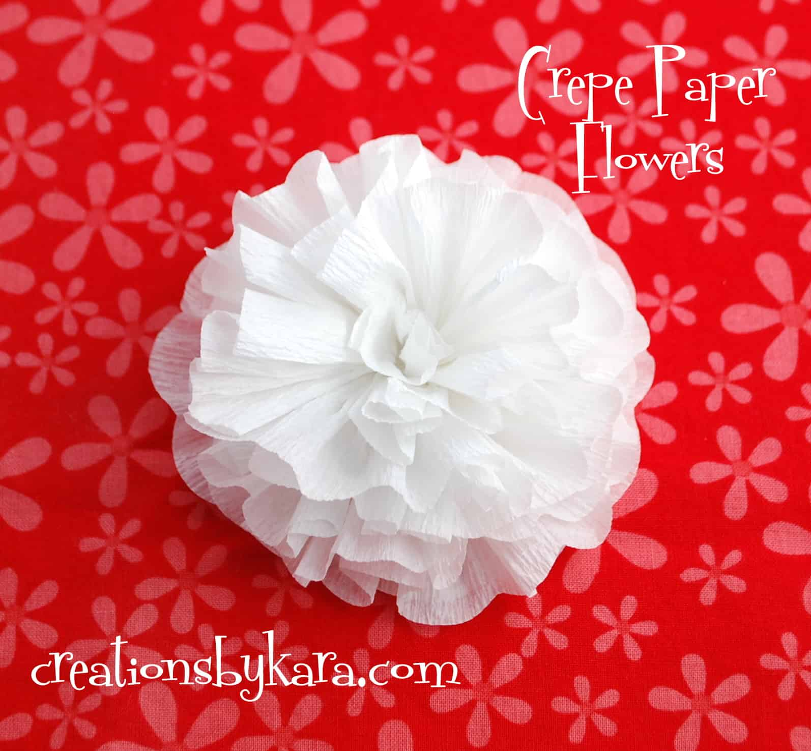 Easy crepe paper flower tutorial comousar easy crepe paper flower tutorial crepe paper flower tutorial mightylinksfo