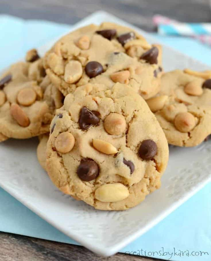 Peanut butter chocolate chip cookies with peanut butter chips and salted peanuts. A soft, chewy, and scrumptious cookie recipe!