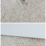 Cleaning Tip– Best, Cheapest Carpet Spot Remover