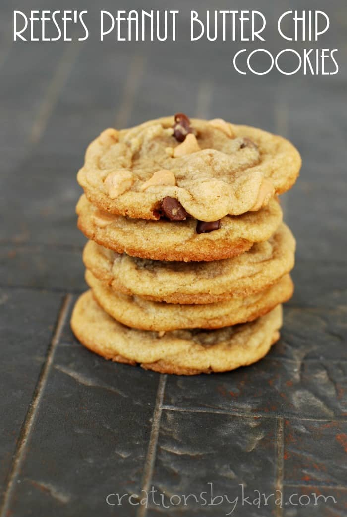 Chocolate Peanut Butter Cookie Recipe Cocoa Powder
