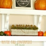 Simple Rustic Fall Centerpiece