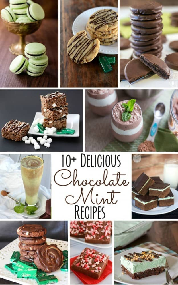 10+ Chocolate Mint Recipes