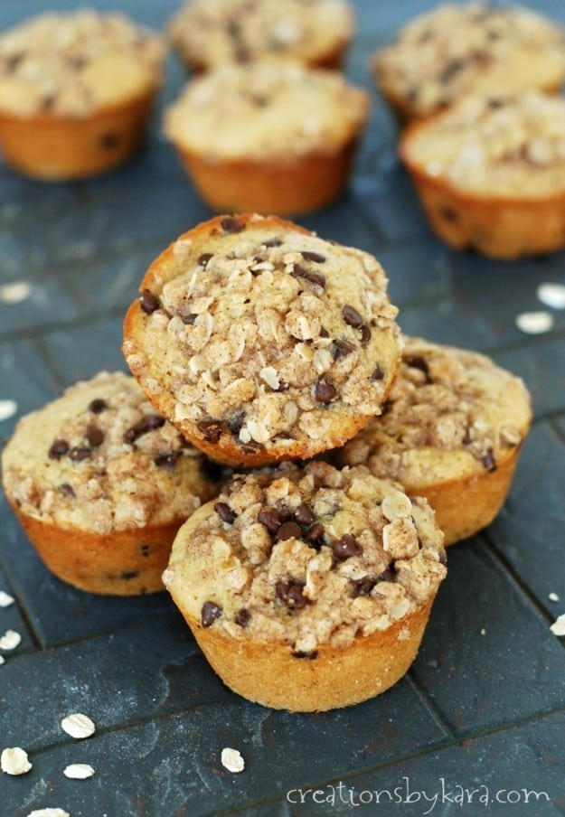 The toasted oats make these Chocolate Chip Muffins the best I've ever tried!