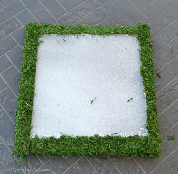Hanging Moss Art Tutorial