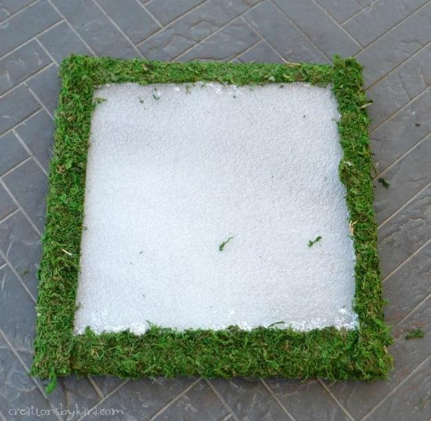 Hanging Moss Art Tutorial