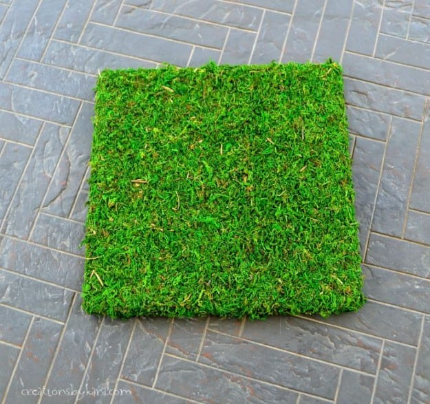 Hanging Moss Art- perfect outdoor decor!