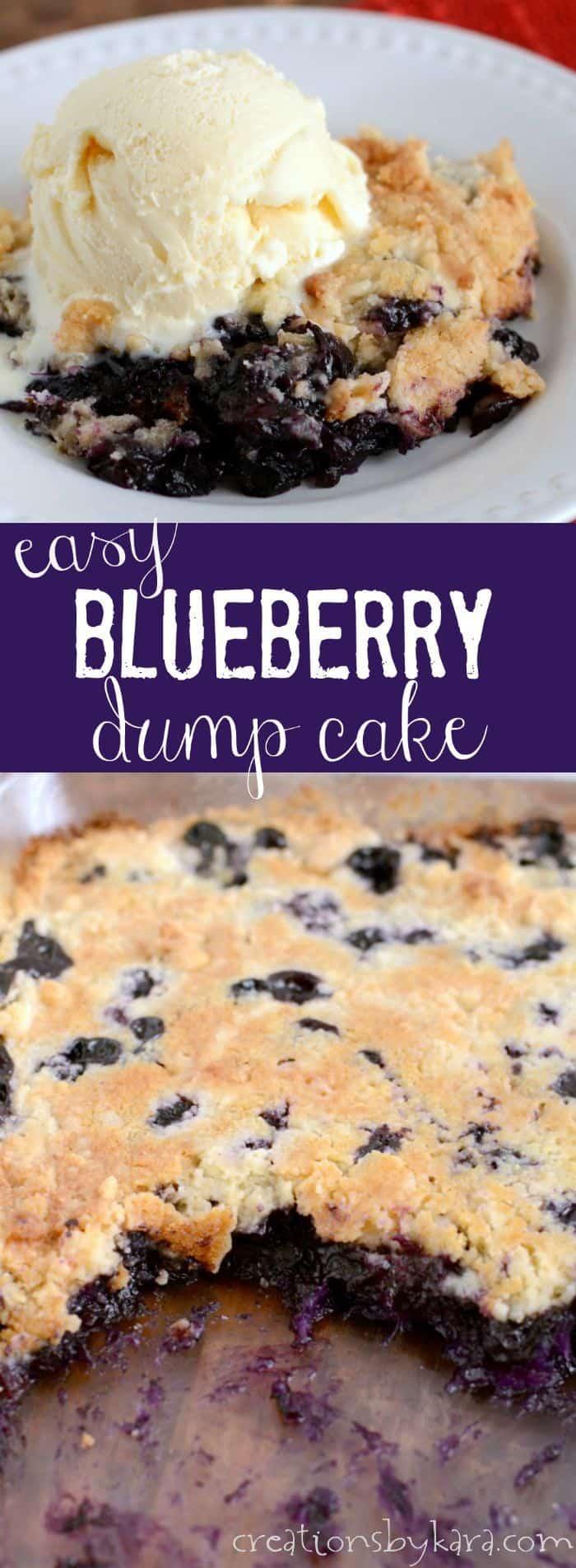Easy Blueberry Cake Donut Recipe
