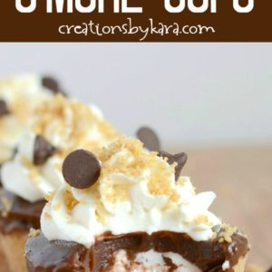 frozen s'more cups recipe
