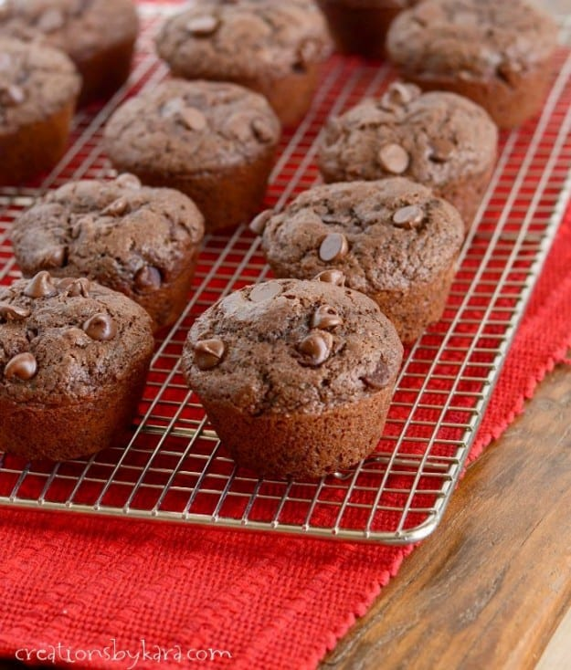 Chocolate lovers will adore these Double Chocolate Chocolate Chip Muffins!