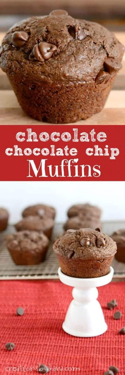 Recipe for Chocolate Chocolate Chip Muffins