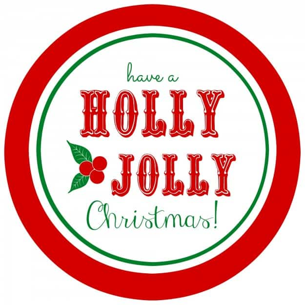 image regarding Cute Gift Tags Printable identified as Free of charge printable Holly Jolly reward tags