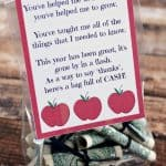 Best Teacher Gift – Bag of Cash