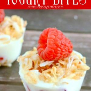frozen yogurt bites Pinterest Pin