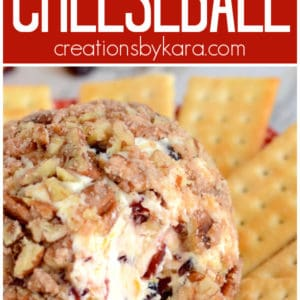 orange cranberry cheese ball