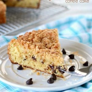 slice of coconut coffee cake with chocolate chips on a plate