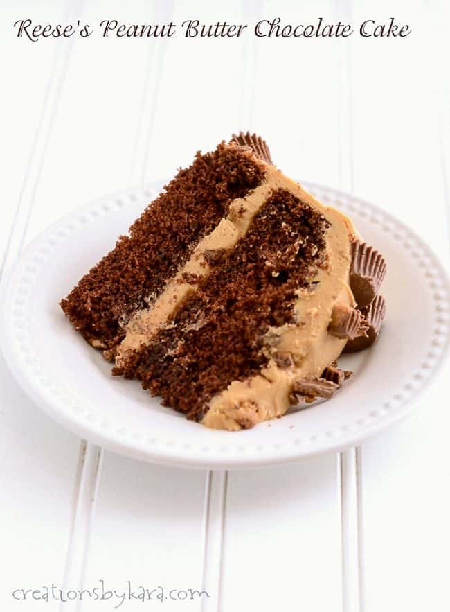 slice of peanut butter chocolate cake on a white plate