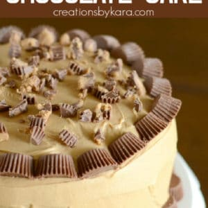 peanut butter cup chocolate layer cake pinterest pin