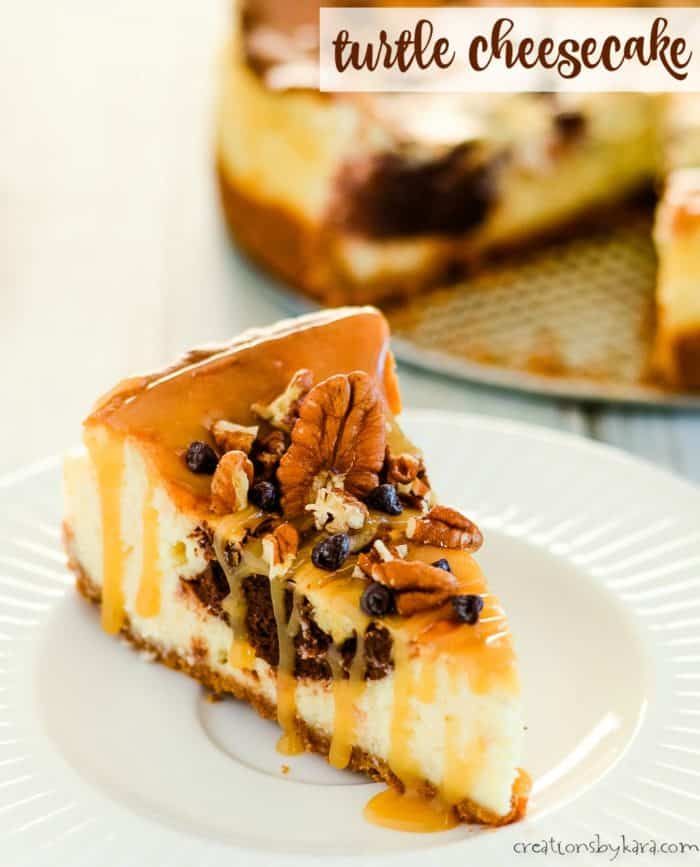 turtle cheesecake title photo