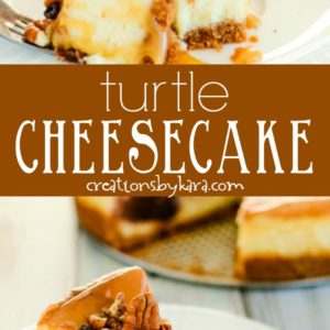 turtle cheesecake recipe collage