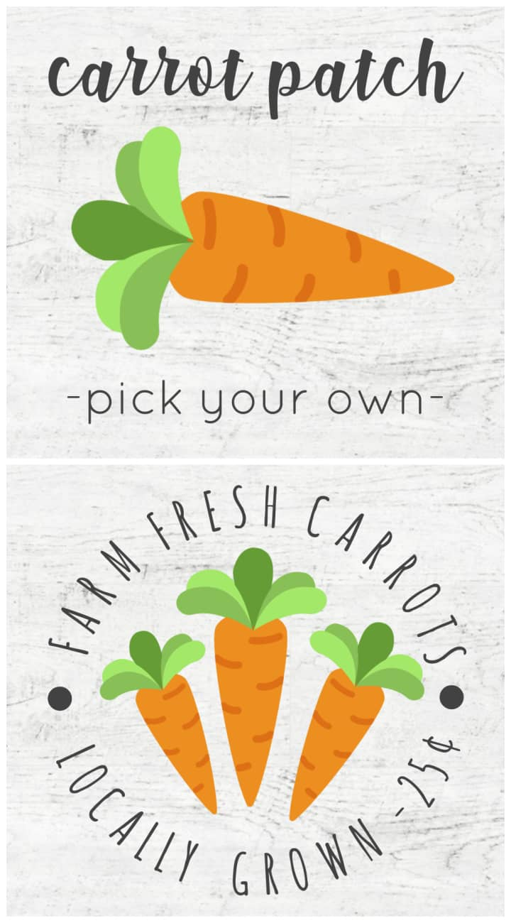 carrot patch and fresh carrots signs