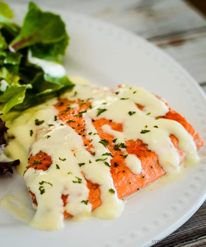 creamy salmon on a plate with salad