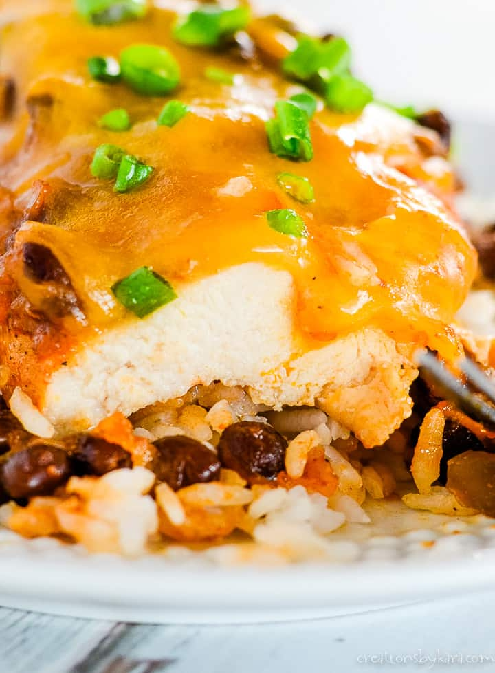 cheesy salsa chicken on a plate with rice