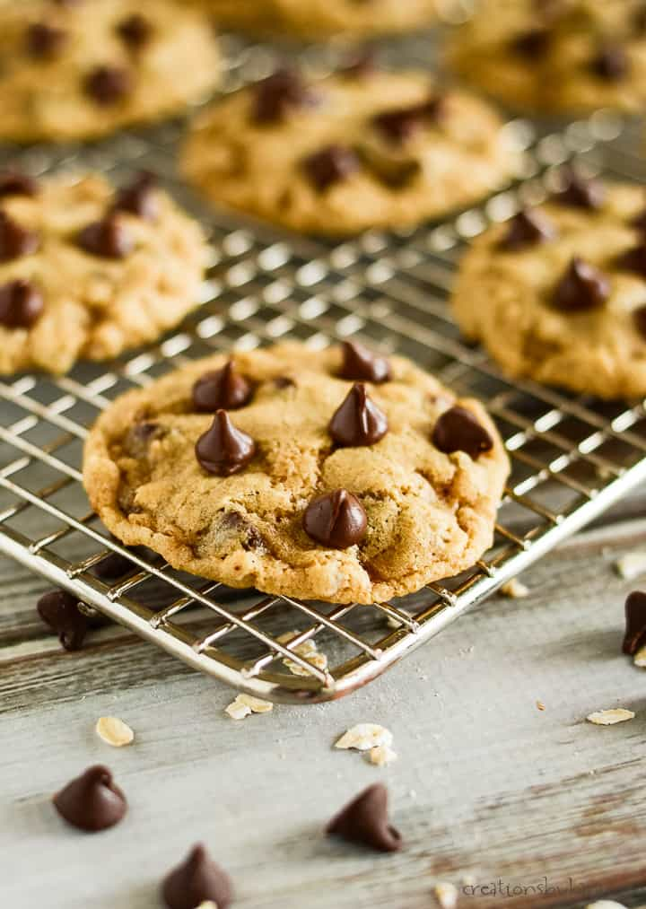 whole wheat chocolate chip cookie with chocolate chips pressed into the top