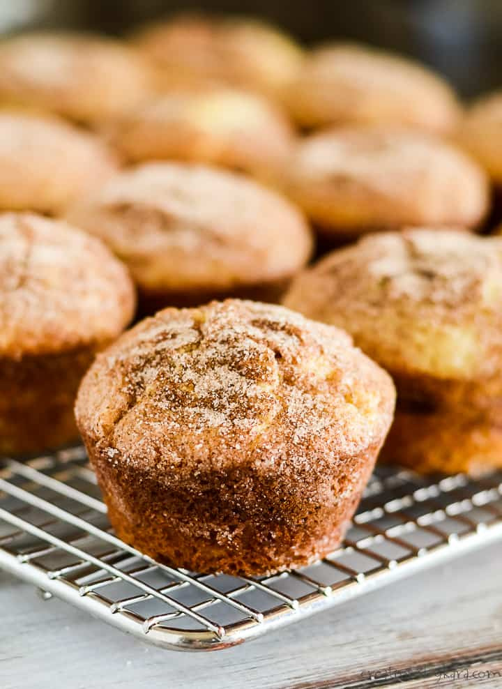 cinnamon swirl muffin broken in half