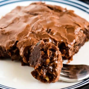 fudgy zucchini brownies with chocolate frosting